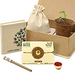 Natural Plantable Rakhi Set with Seed Paper Organic Diary