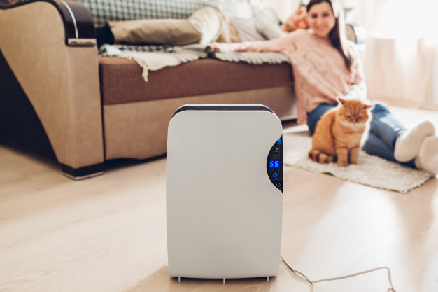 11 Best Air Purifiers: Reasons to Buy Air Purifier in India
